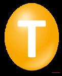 T-klein